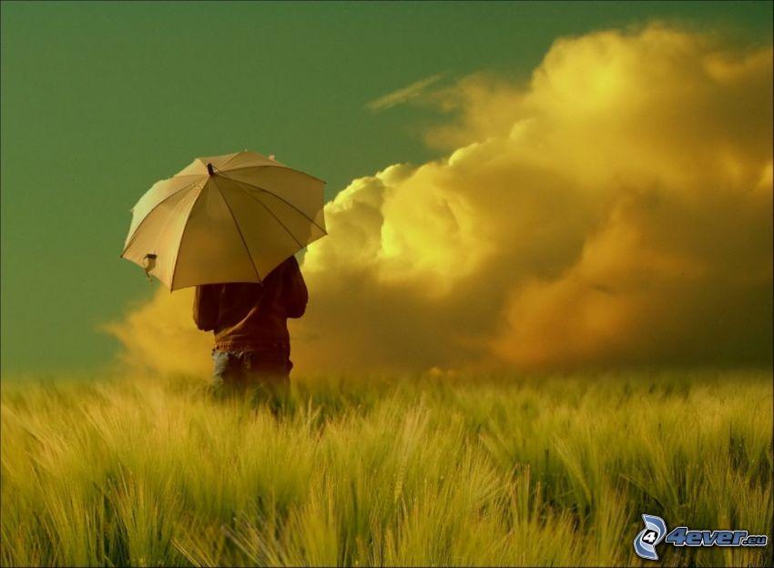 niña con paraguas, campo