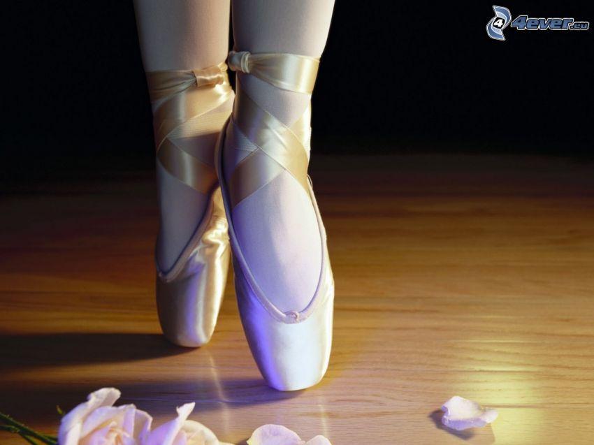 bailarina, pies, zapatos, pétalos de rosa