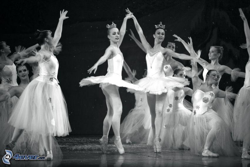 bailarinas, apariencia, baile, Foto en blanco y negro