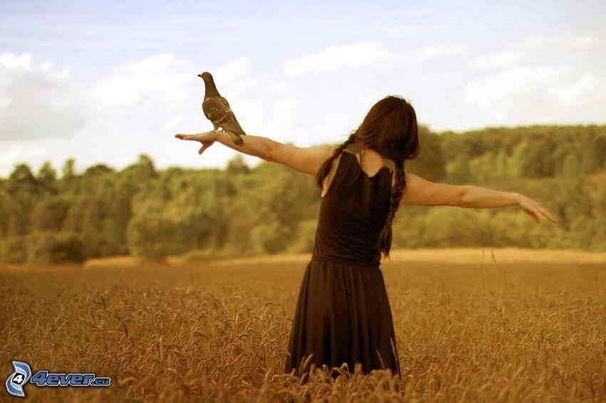chica en el campo, pájaro