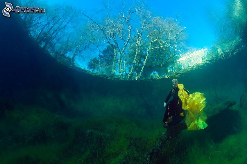 mujer, agua, alga marina