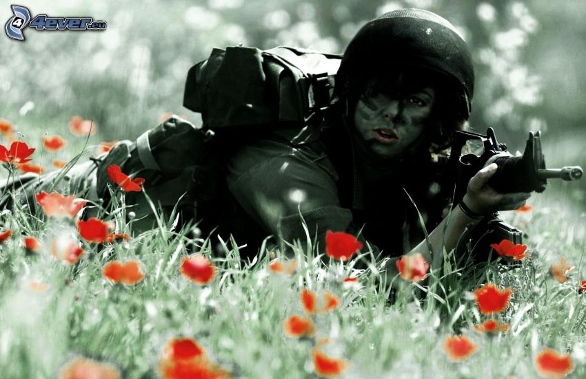mujer soldado, amapola