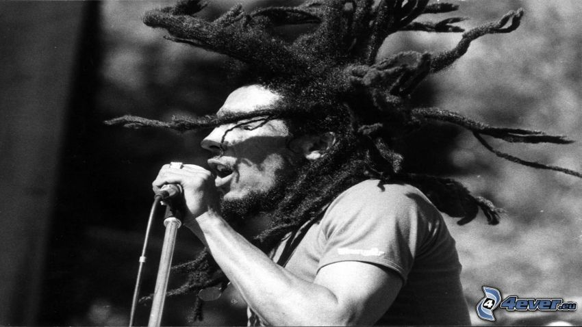 Bob Marley, canción, rastas
