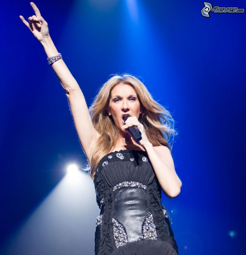 Celine Dion, concierto, vestido negro