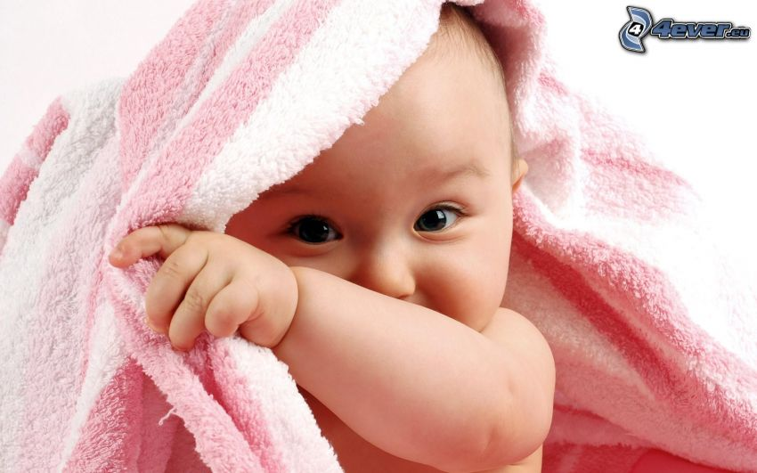 bebé, toalla