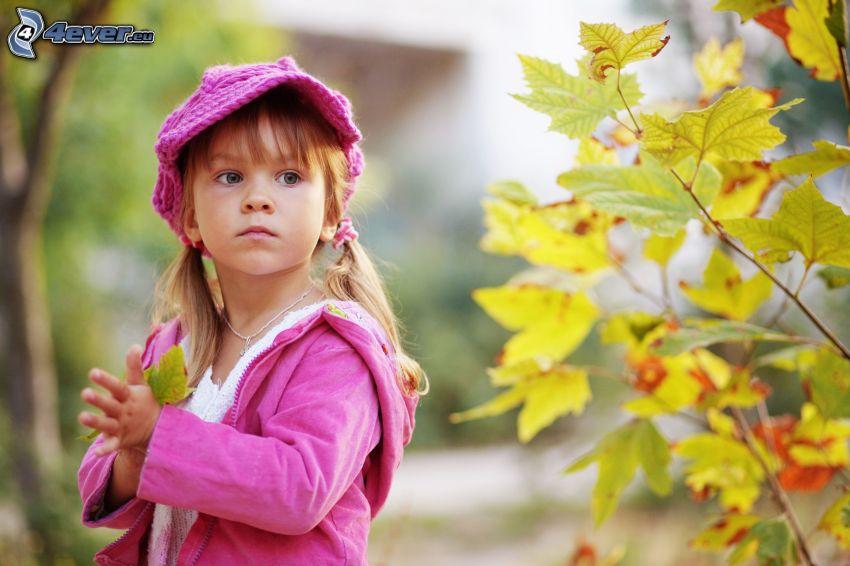 chica, gorro, hojas de otoño, ramas
