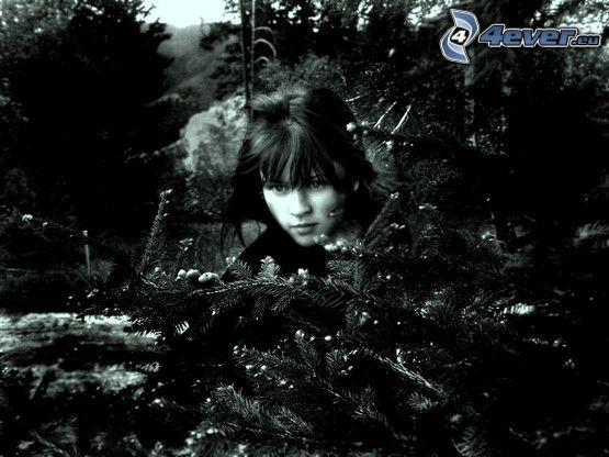 chica gótica, árboles coníferos