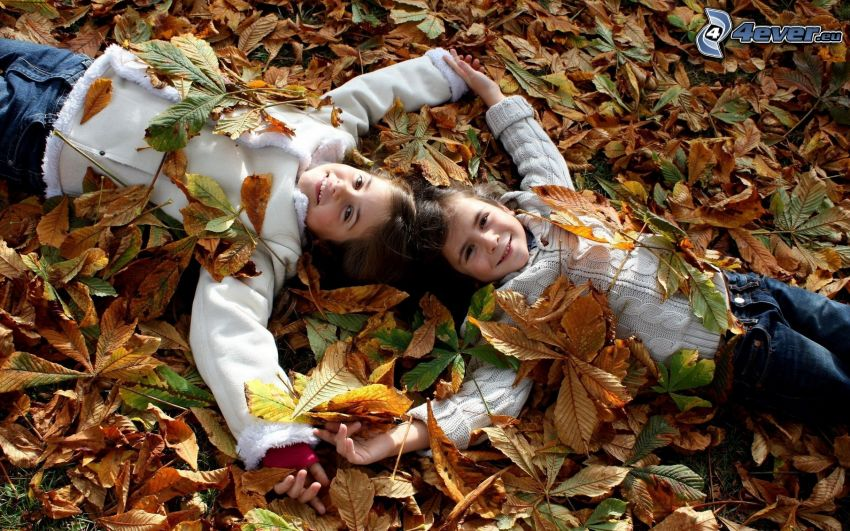 chicas, hojas caídas