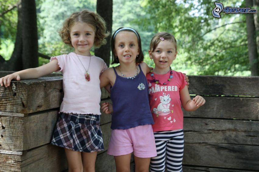 chicas, muro, madera, bosque