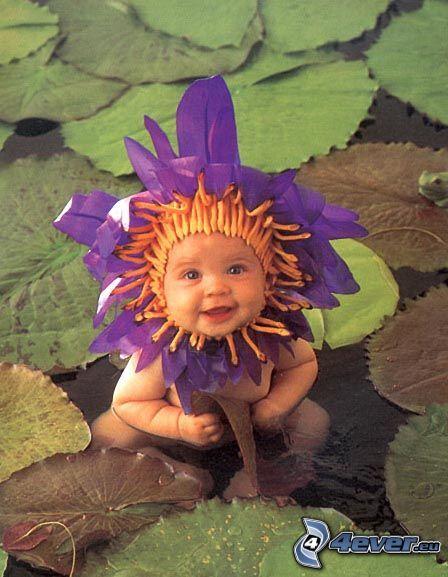 niño, flor, lirios de agua