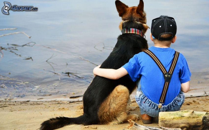 niño, pastor alemán, lago
