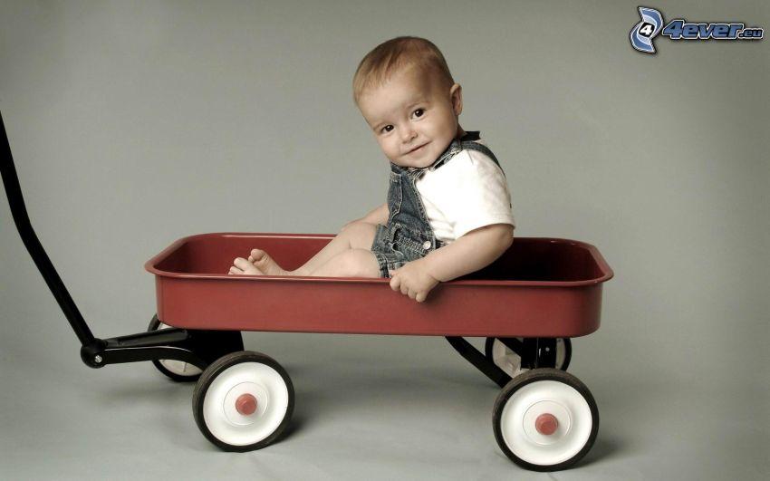 niño pequeño, carro