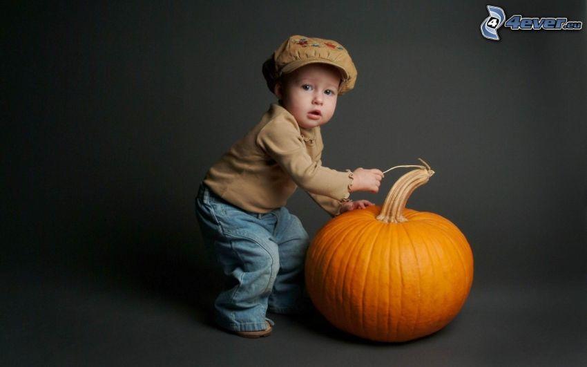 niño pequeño, gorro, calabaza