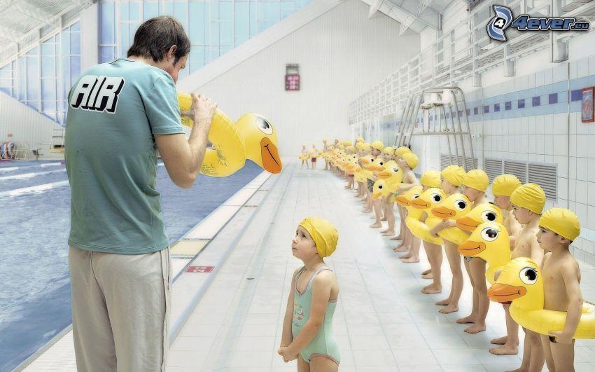 niños, piscina, patos