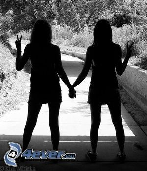 saludo, amistad, sombra, camino