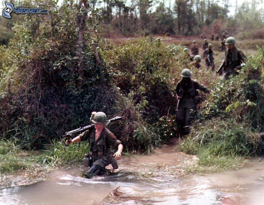 soldados, Arbustos