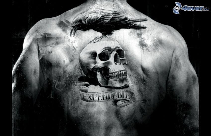 tatuaje, cráneo, cuervo, espalda