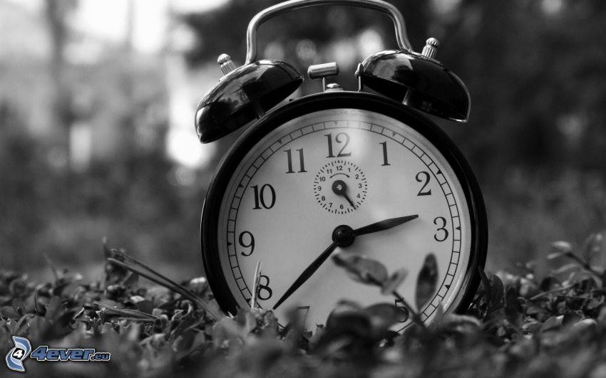 alarma, tiempo