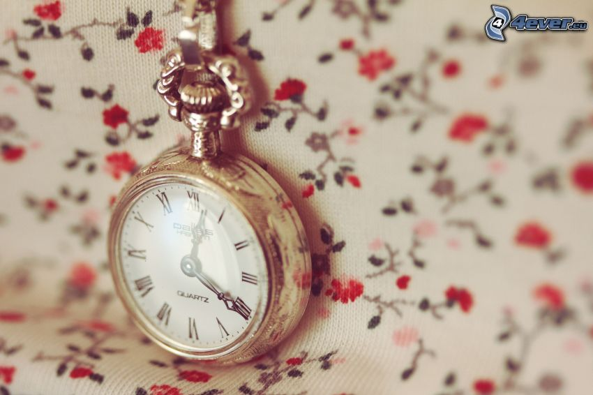 reloj histórico, rosas