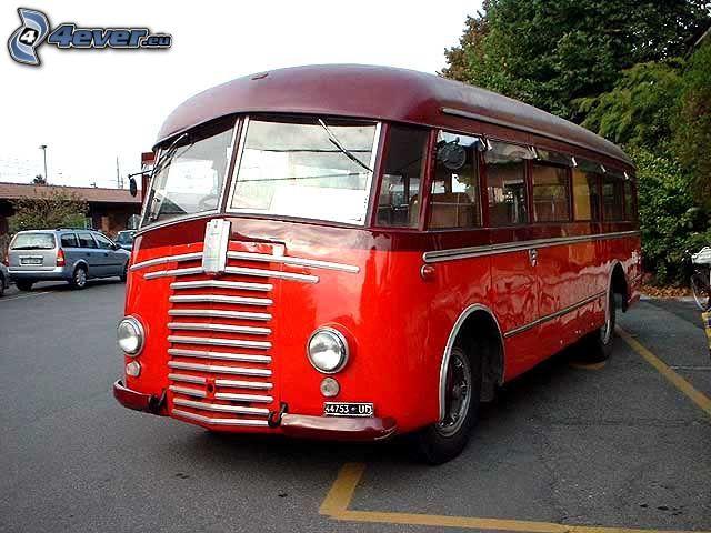 autobús, veterano