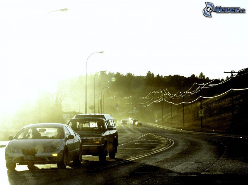 camino, coches