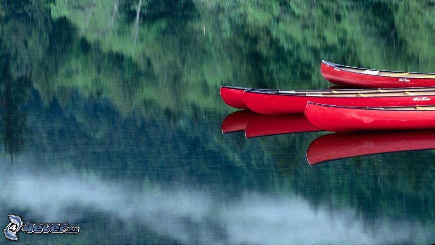 canoa, río, reflejo