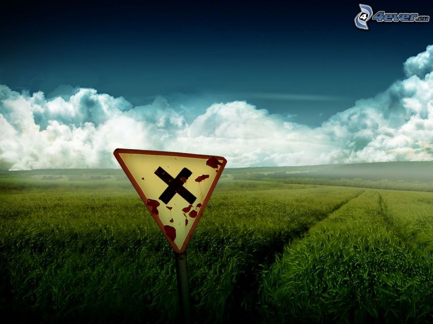 señal de tráfico, campo de trigo