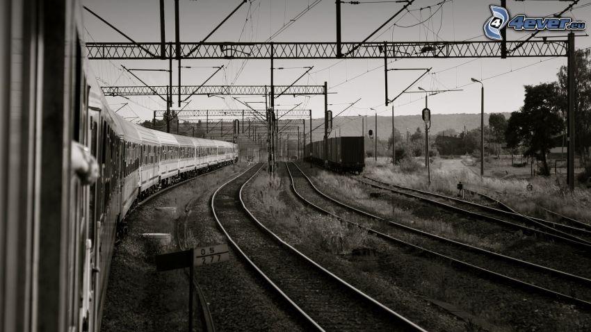 ferrocarril, carril, trenes