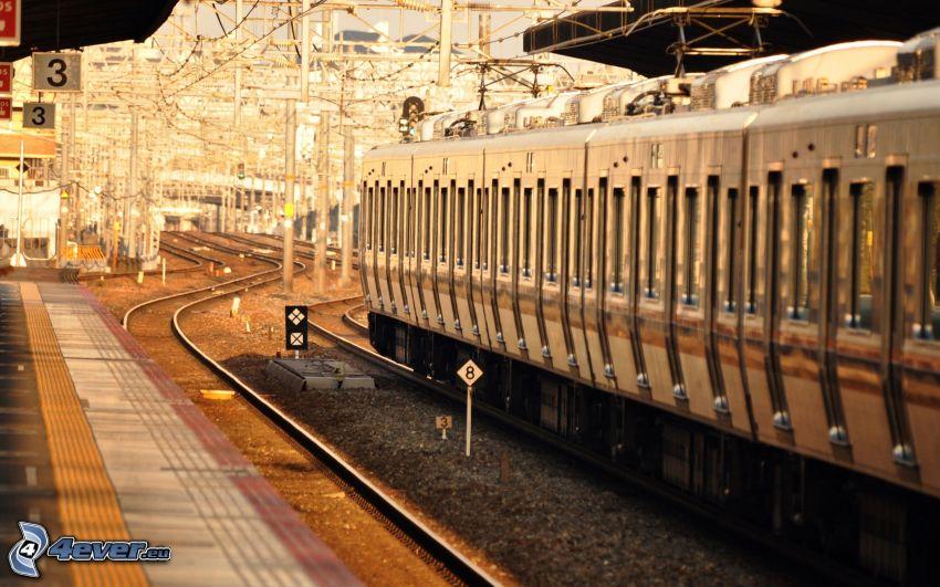 La estación de tren, tren
