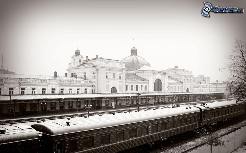La estación de tren, trenes