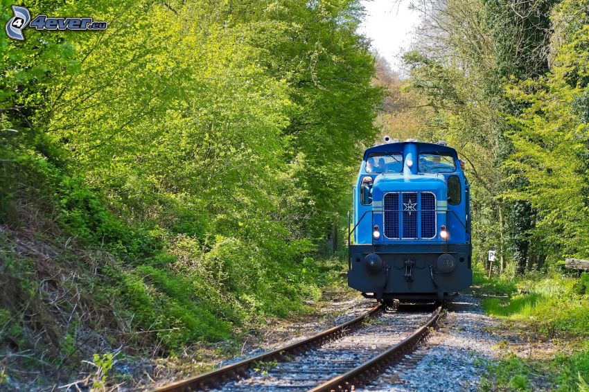 locomotora, árboles verdes