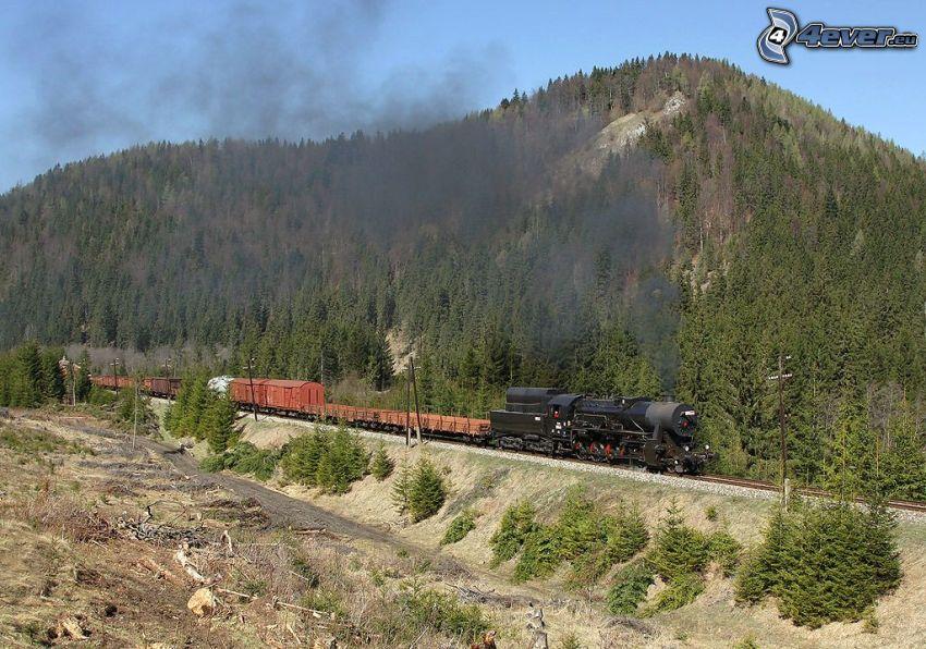 tren de vapor, tren de carga, colina