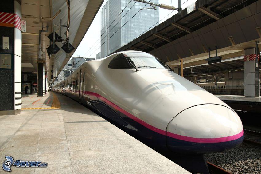 trenes de alta velocidad, La estación de tren