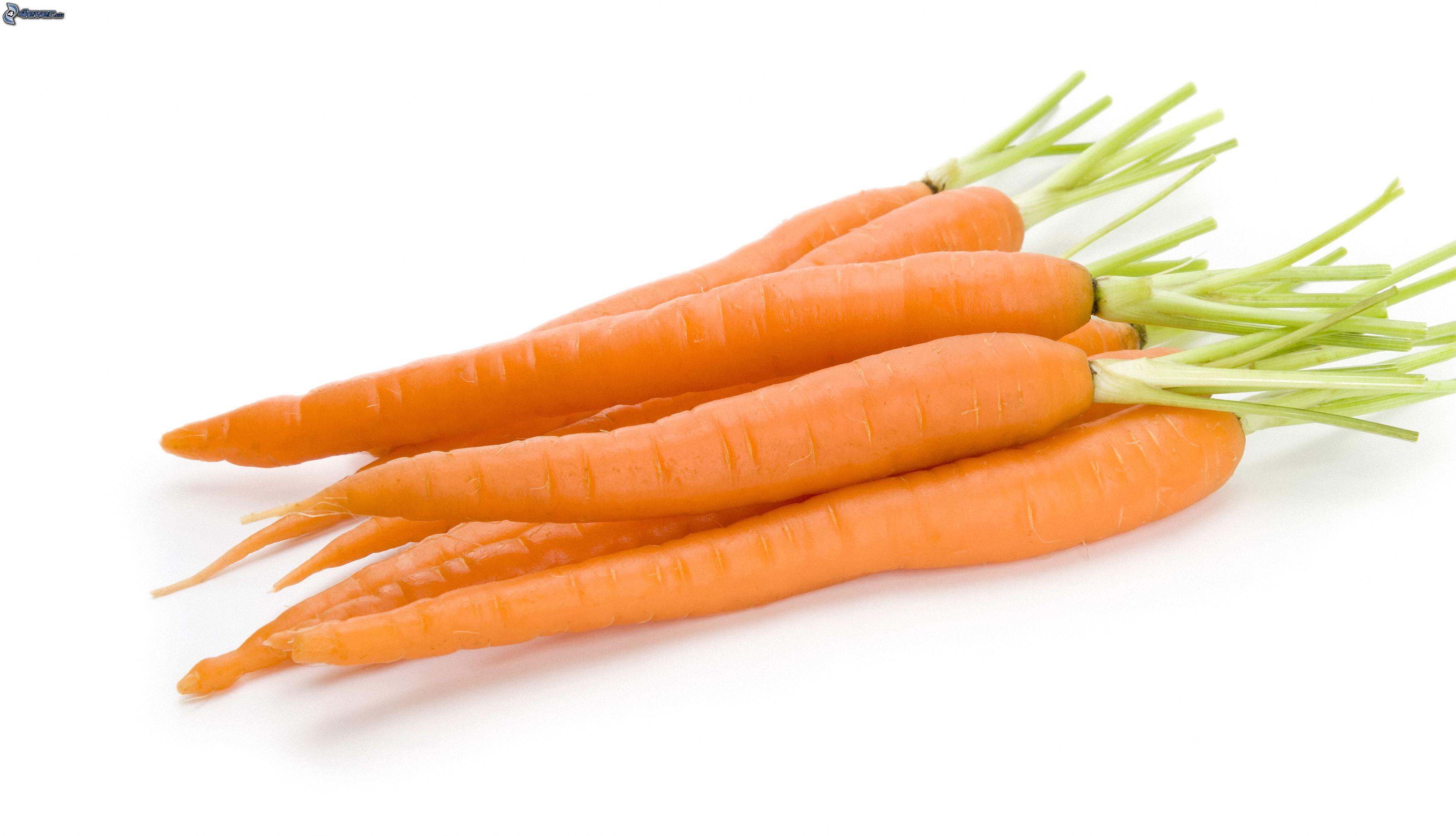 Zanahoria Sin Fondo / La zanahoria es una hortaliza bienal, perteneciente a la familia apiáceas, que produce una roseta de 8 a la zanahoria aparece mencionada ya en los escritos del romano plinio el viejo en el siglo i d.c.