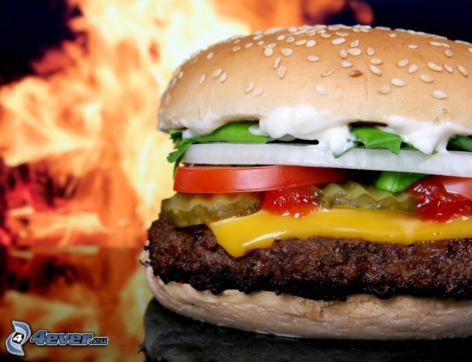 CK's Food  - Page 3 Hamburger-156669
