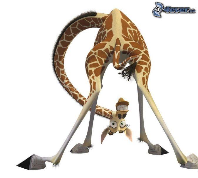 Girafe de madagascar - Cartone animato giraffe immagini ...