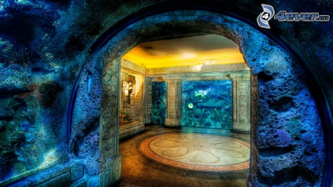 aquarium. Black Bedroom Furniture Sets. Home Design Ideas