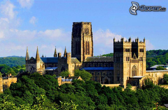 La cathédrale de Durham, forêt