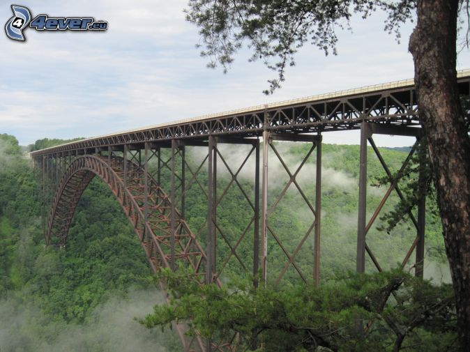 New River Gorge Bridge, brouillard