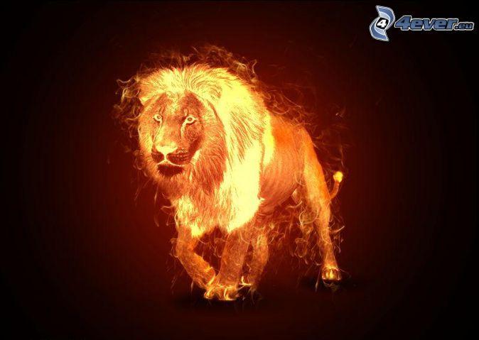Lion de feu for Sfondi leone