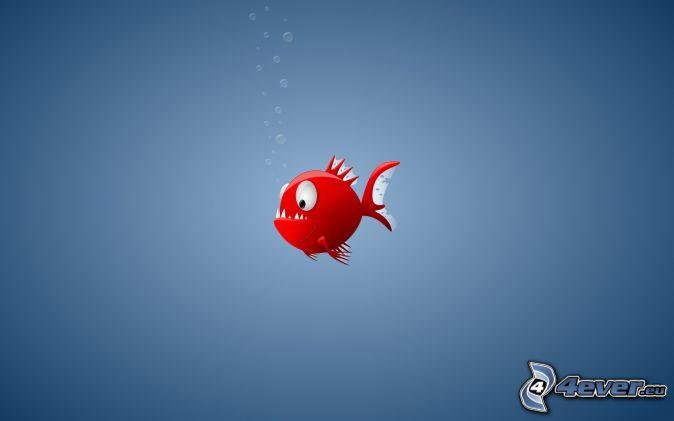 Poisson rouge for Recherche poisson rouge