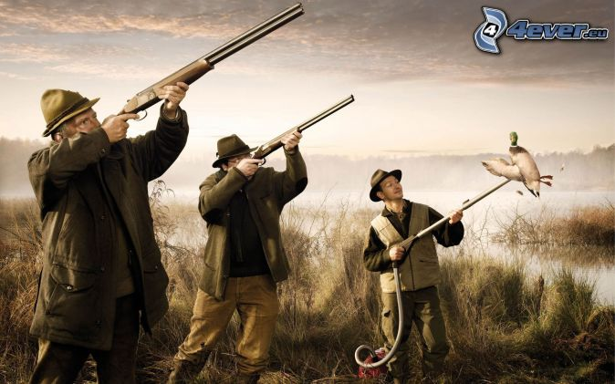 hommes, fusils, aspirateur, canard, chasse