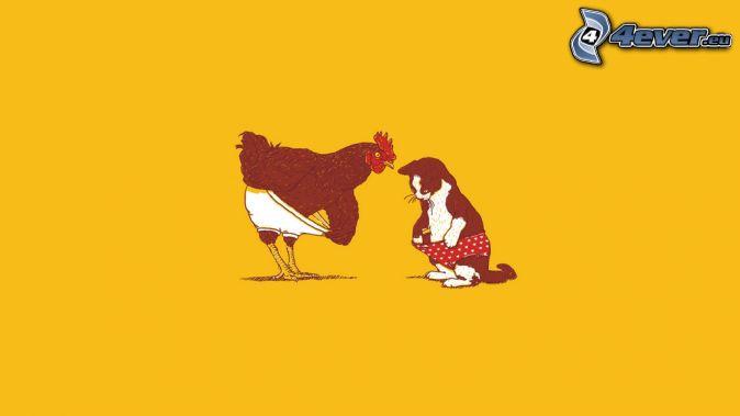 poule, chat, culottes