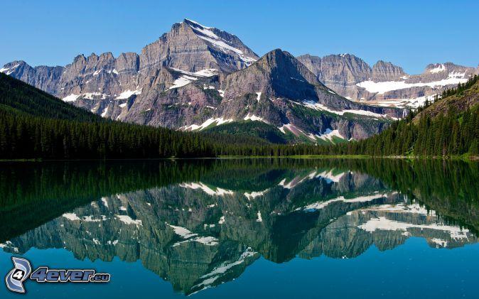 Mount Wilber, lac, reflexion, forêt