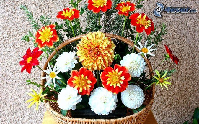 Fleurs colorées , panier