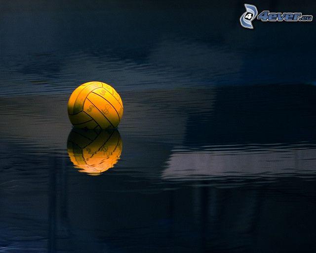 water-polo, balle, surface de l'eau