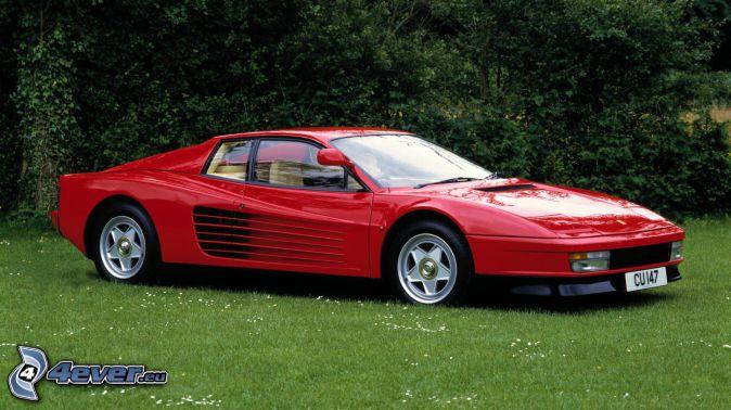 Ferrari TR, pelouse