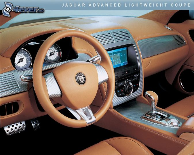 Jaguar for Interieur jaguar