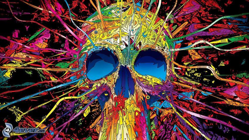 crâne, des lignes colorées