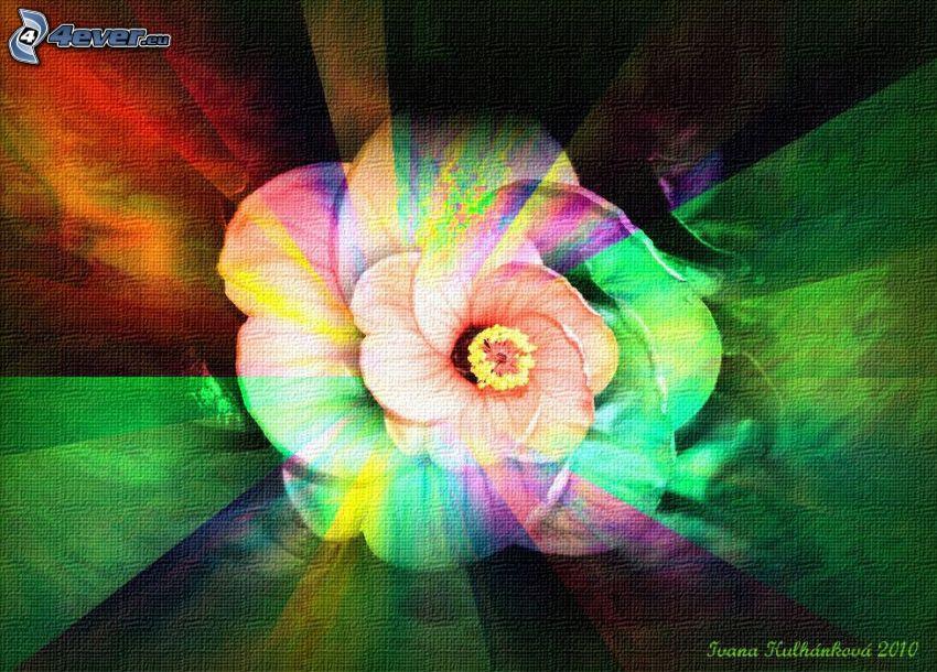 rose, fleur, pétales